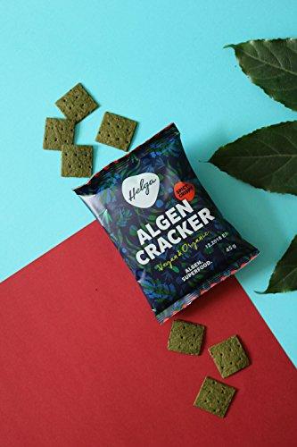 HELGA BIO Algencracker knusprig scharf | Chlorella Alge | Vitamin B 12 Quelle | Superfood | (12x 45g) - 3