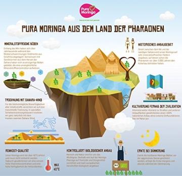 Moringa Samen Pflanzset von Pura Planta zur Anzucht eines Moringa Baum - Moringa oleifera Samen für deinen Moringabaum - Anzuchtset mit Moringa Samen, Topf, Pflanzerde, Bio-Dünger & Pflanzanleitung |- bio-zertifiziertes Baum Geschenk - 3