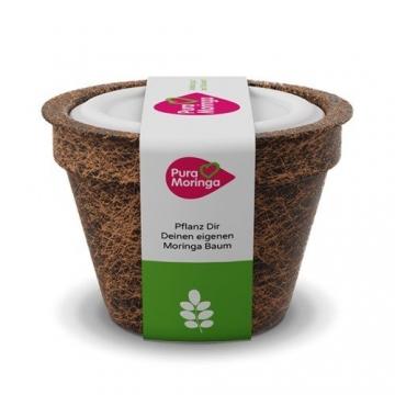 Moringa Samen Pflanzset von Pura Planta zur Anzucht eines Moringa Baum - Moringa oleifera Samen für deinen Moringabaum - Anzuchtset mit Moringa Samen, Topf, Pflanzerde, Bio-Dünger & Pflanzanleitung |- bio-zertifiziertes Baum Geschenk - 1