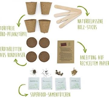 SATTE SAAT Superfood Anzuchtset mit Moringa, gesunden Kräutern und Gemüse - ökologisches Pflanzset inkl. Töpfe, Anzucht-Erde, Holz-Sticks, Samen und Anleitung - zeitloses Urban Gardening Geschenk - 2