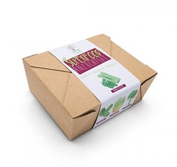 SATTE SAAT Superfood Anzuchtset mit Moringa, gesunden Kräutern und Gemüse - ökologisches Pflanzset inkl. Töpfe, Anzucht-Erde, Holz-Sticks, Samen und Anleitung - zeitloses Urban Gardening Geschenk - 3