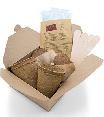 SATTE SAAT Superfood Anzuchtset mit Moringa, gesunden Kräutern und Gemüse - ökologisches Pflanzset inkl. Töpfe, Anzucht-Erde, Holz-Sticks, Samen und Anleitung - zeitloses Urban Gardening Geschenk - 5