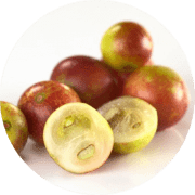 Superfood Camu Camu