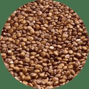 Superfood Quinoa